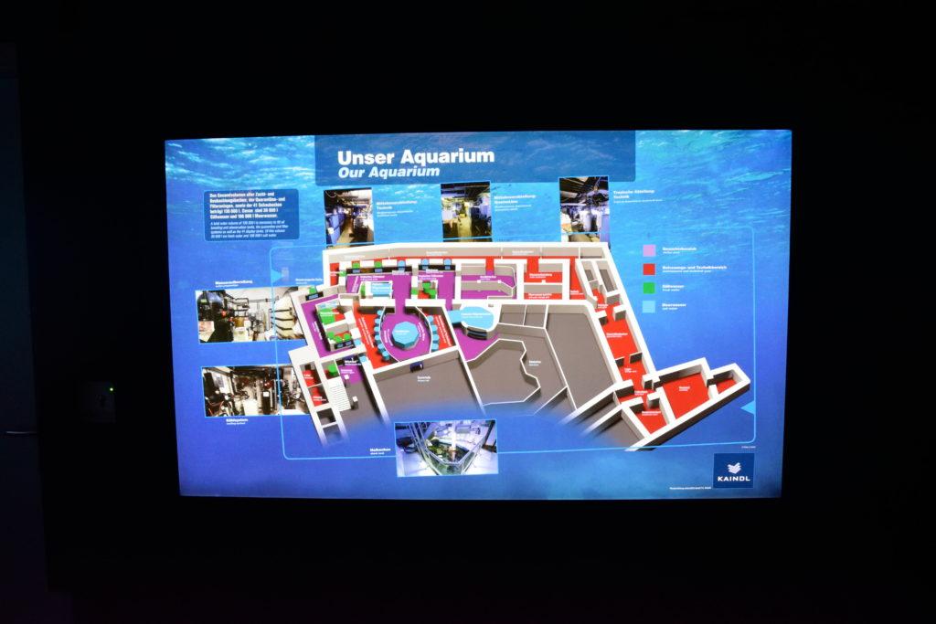 水族館内のマップ