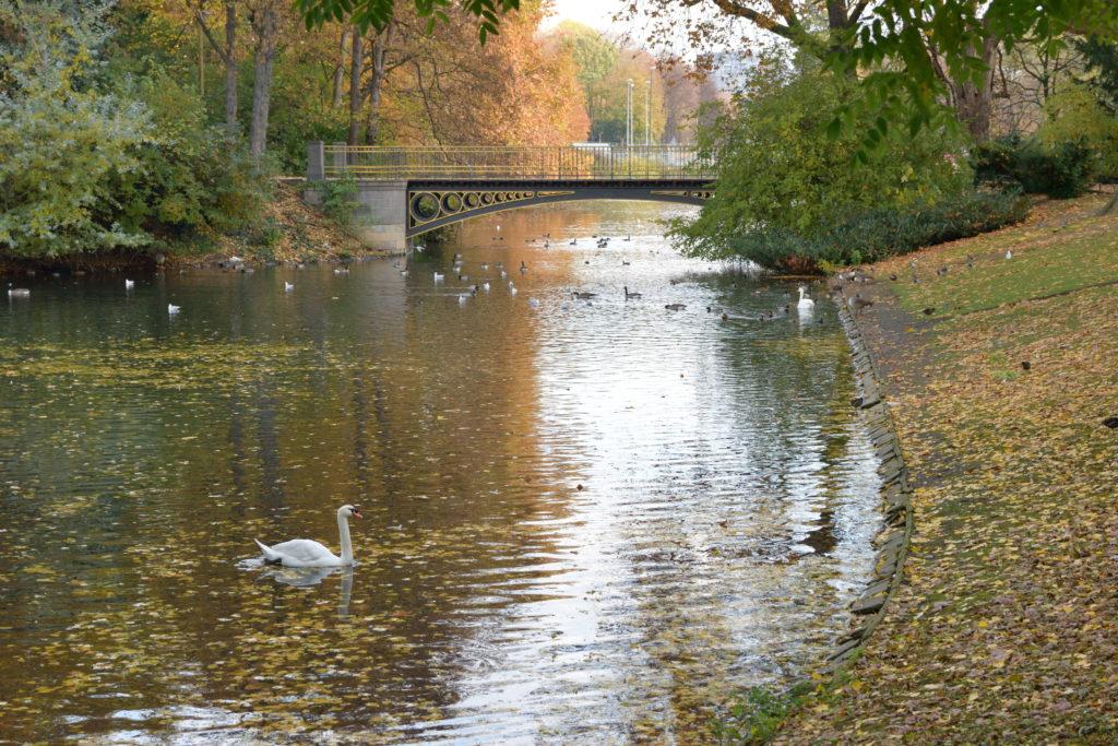 モーツァルト通り近くの公園