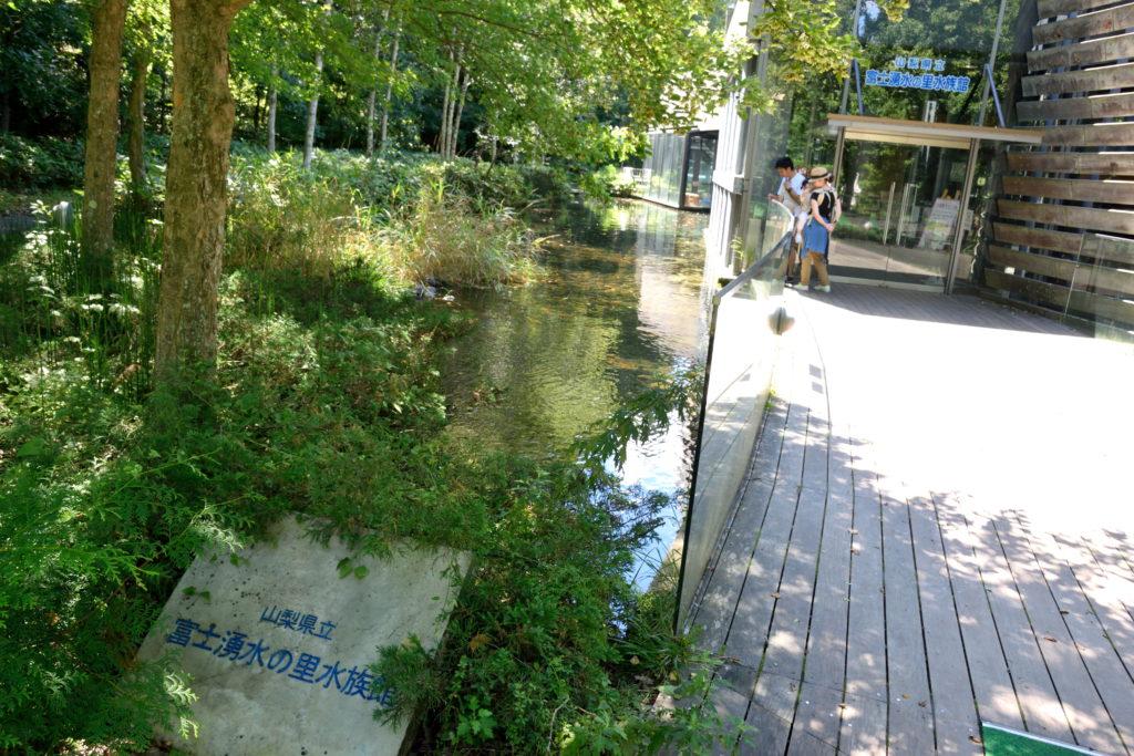 富士湧水の里水族館入口