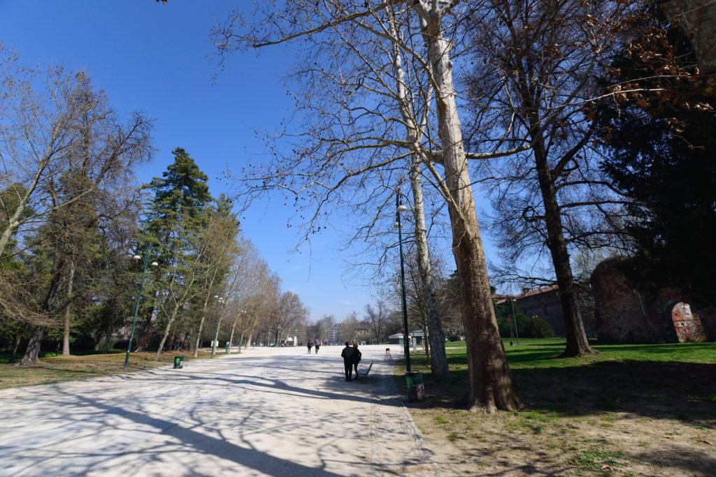 公園の様子