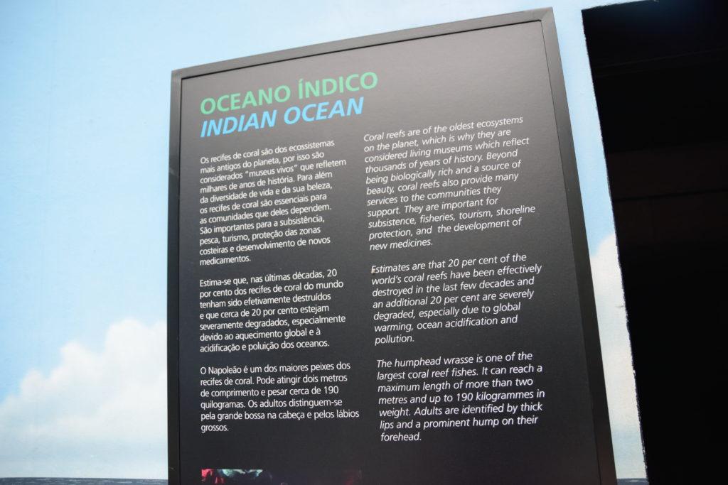 インド洋の展示の説明