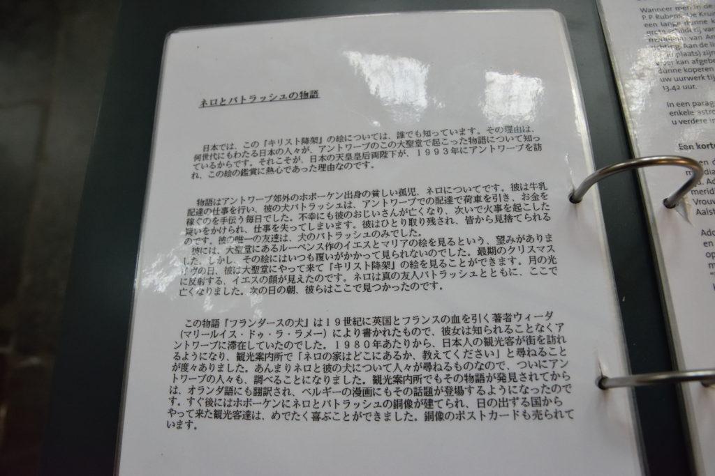 日本語での解説内容