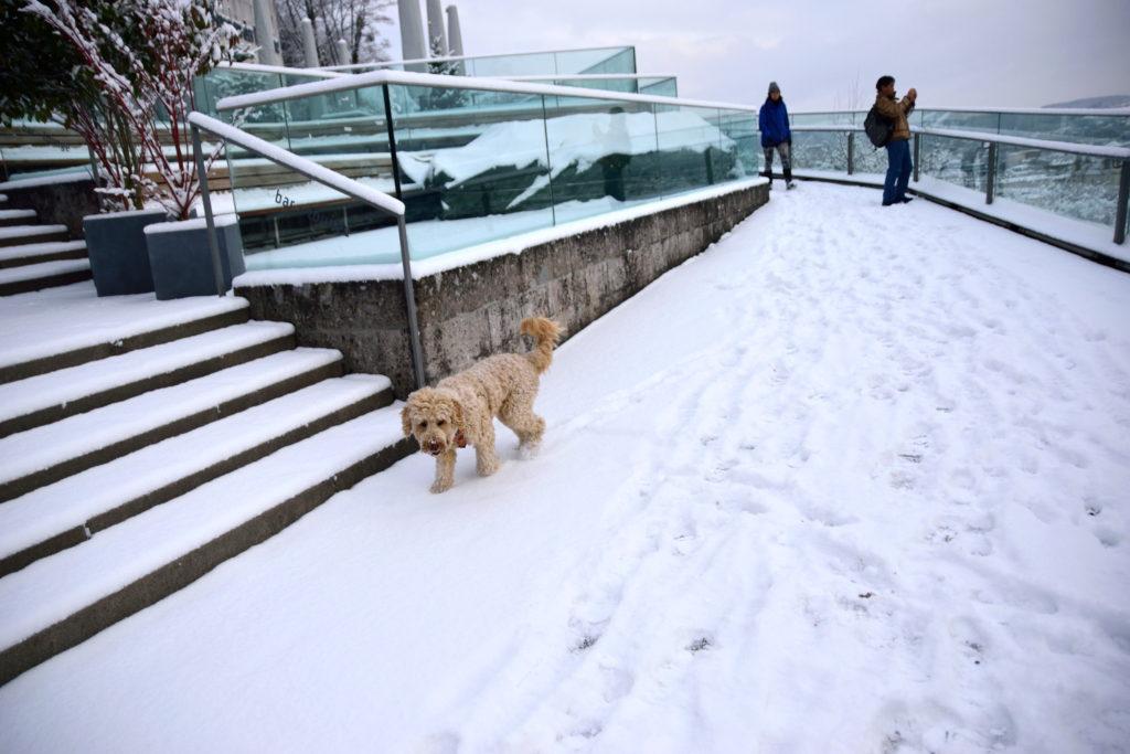 雪の積もったザルツブルクの展望台