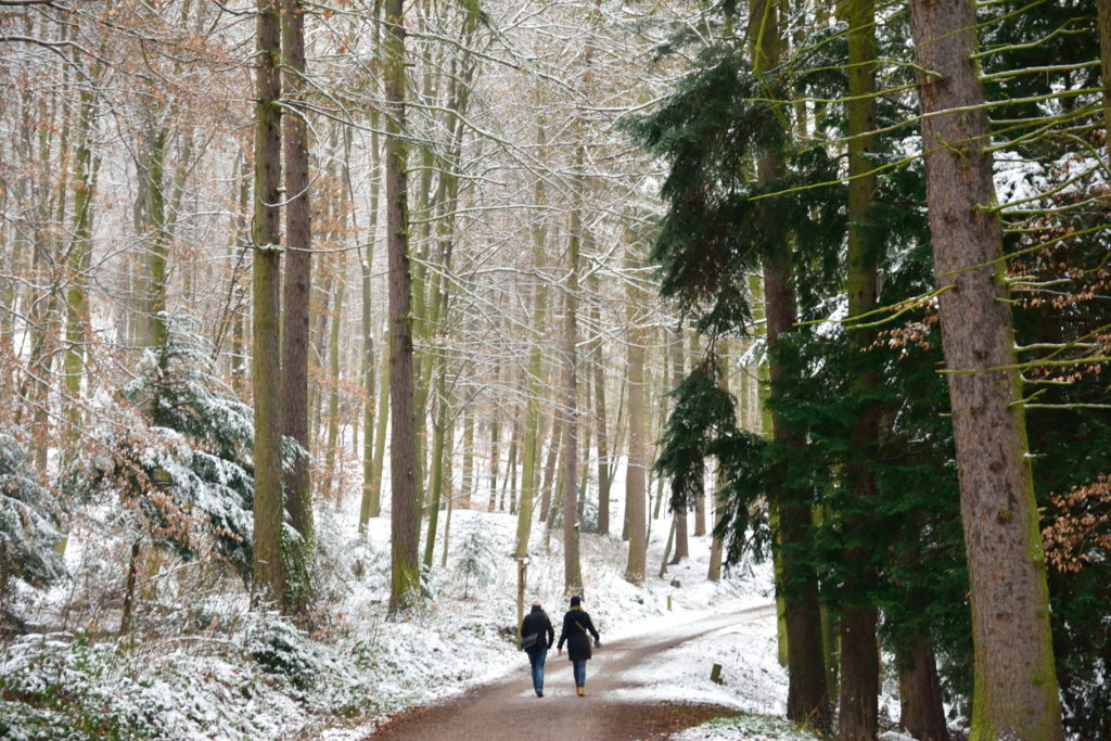 ハイデルベルク、哲学の道のハイキングコース