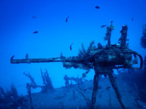 横から見た沈没船の機関銃