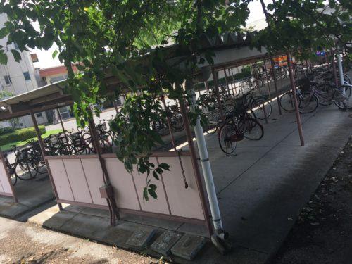 旧足利西高校の自転車置き場