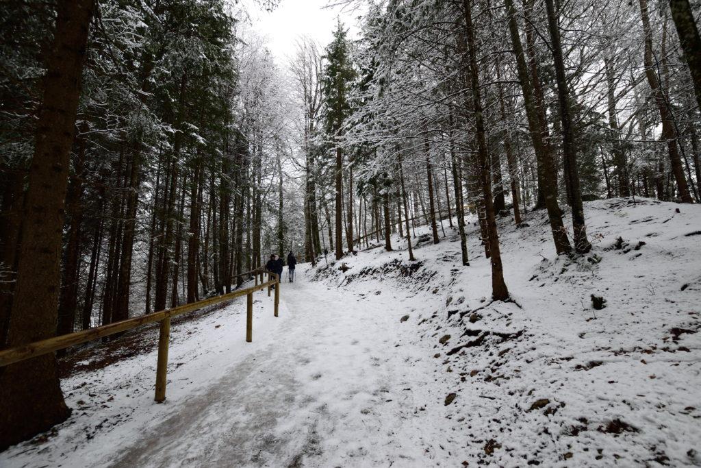 立入禁止の雪道