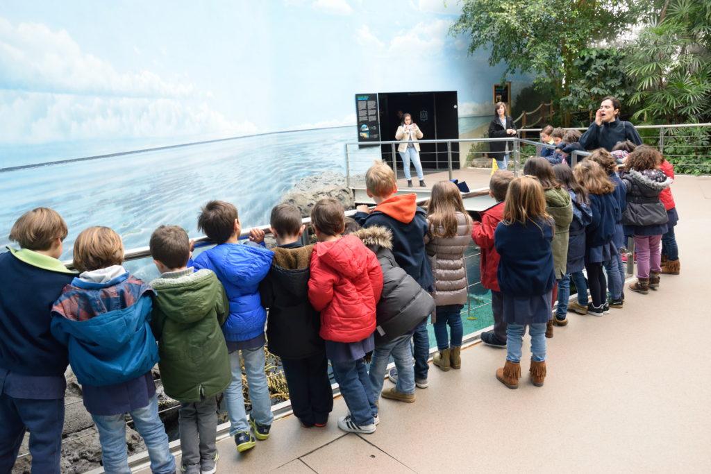 リスボン水族館にいた社会見学の子どもたち
