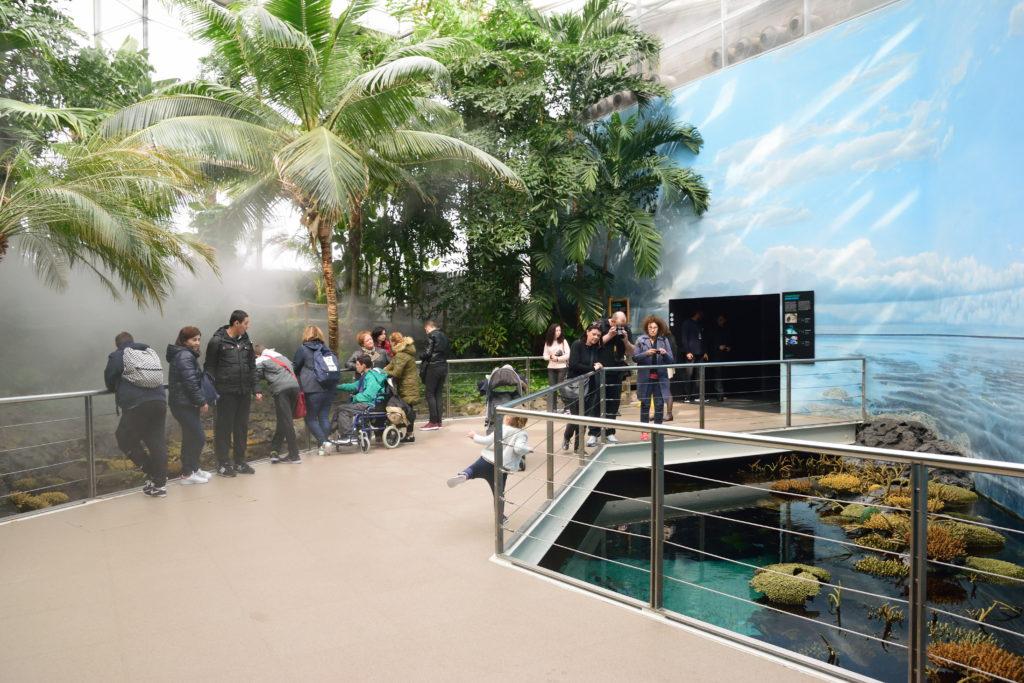 温室の展示