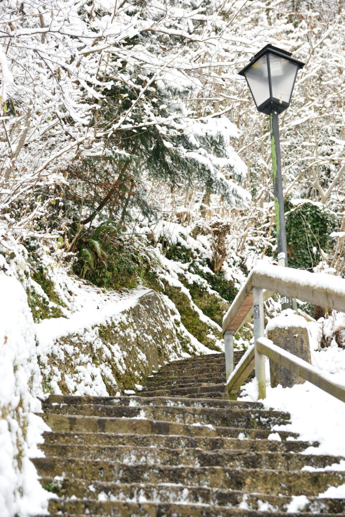 雪の山道の階段