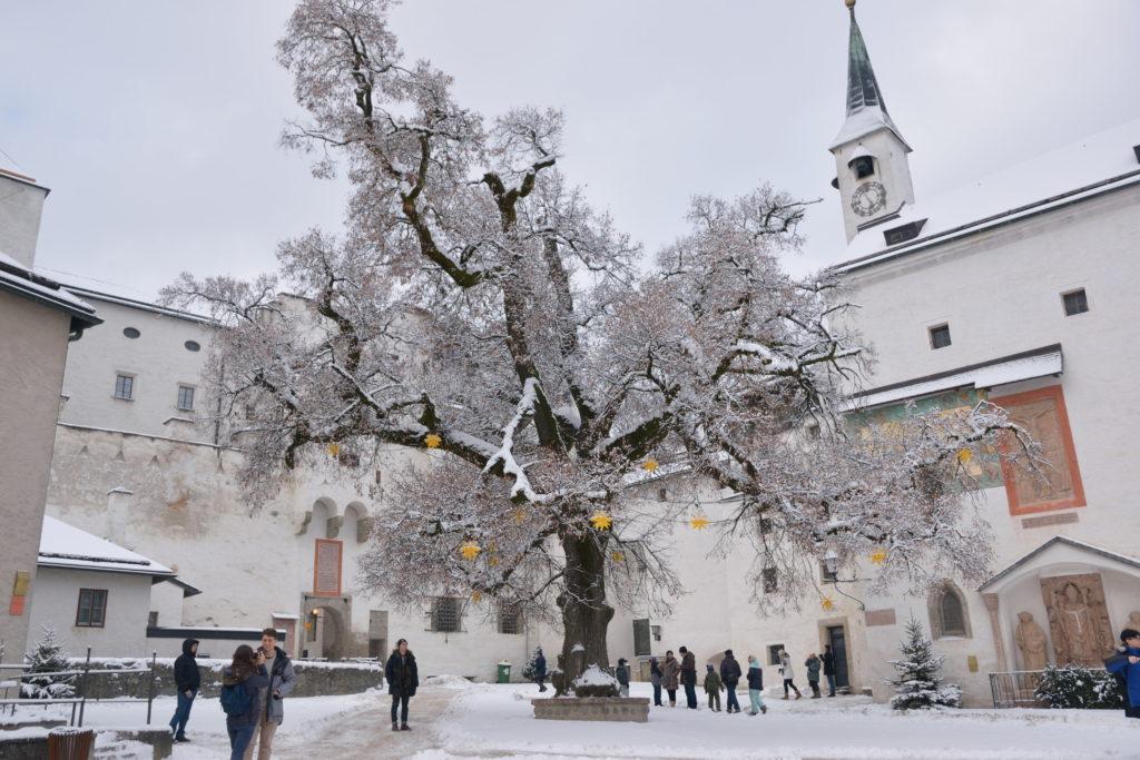雪が積もったザルツブルク場内の広場