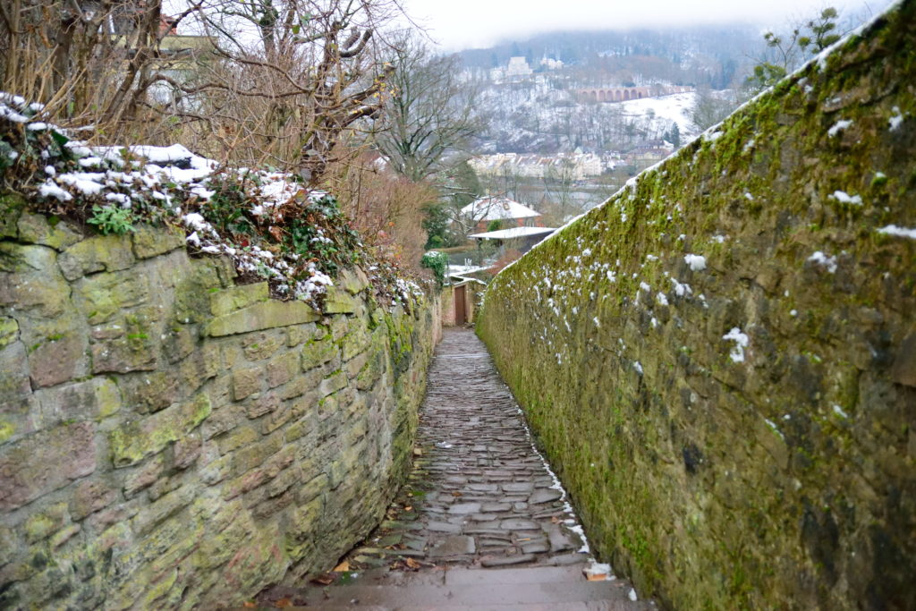 石畳の坂道から見下ろすハイデルベルクの街