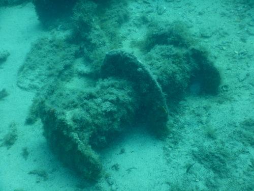 沈没船のスクリュー