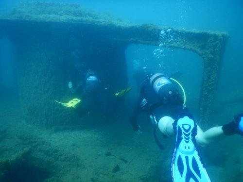 ダイビングメンバー