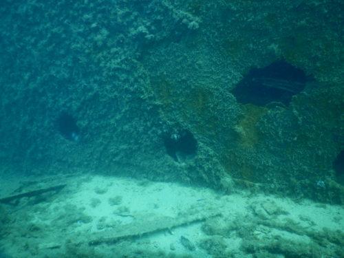 沈没船の側面