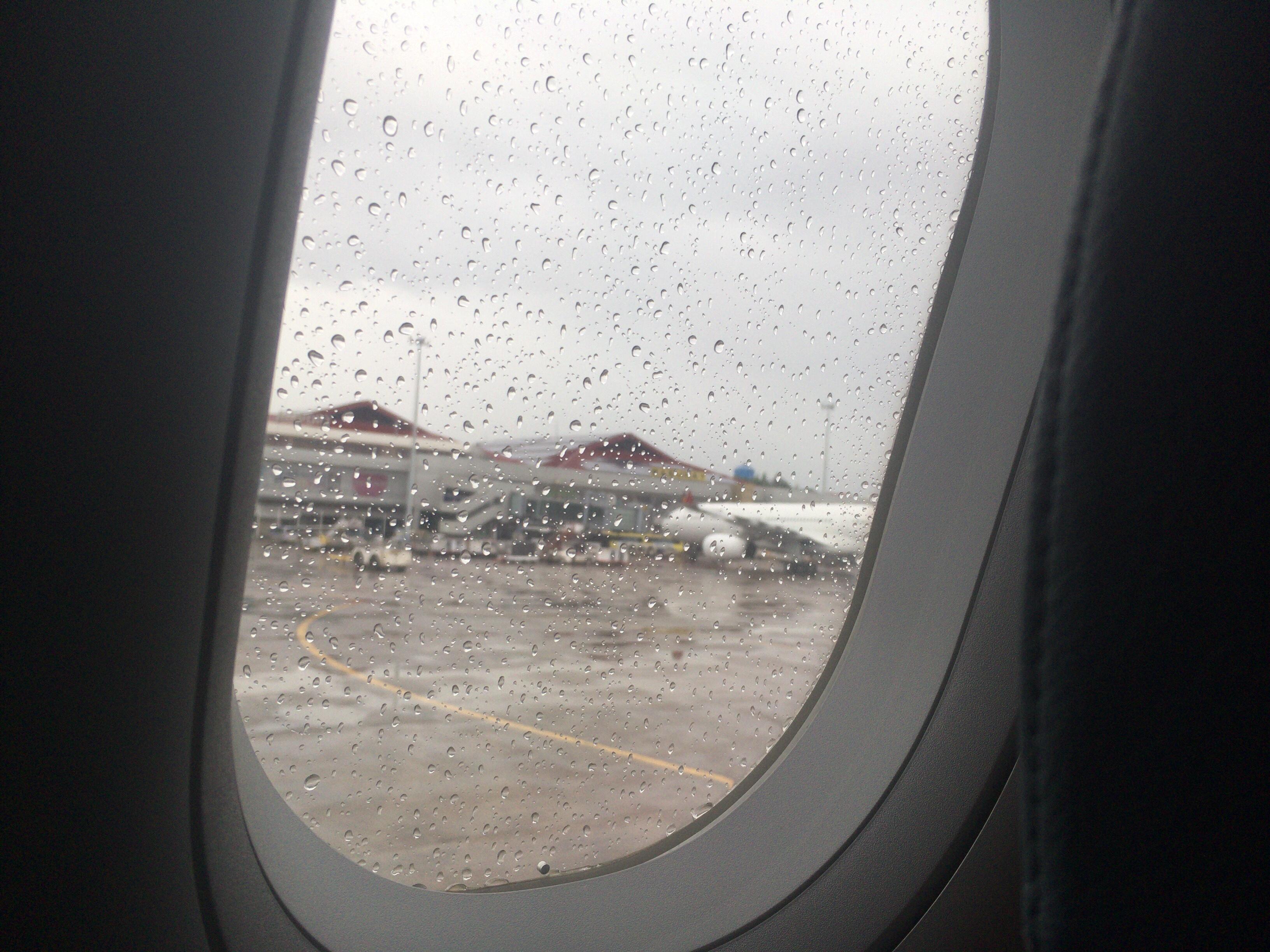 【搭乗記】セブ国際空港→成田国際空港 PR436便 A321-231