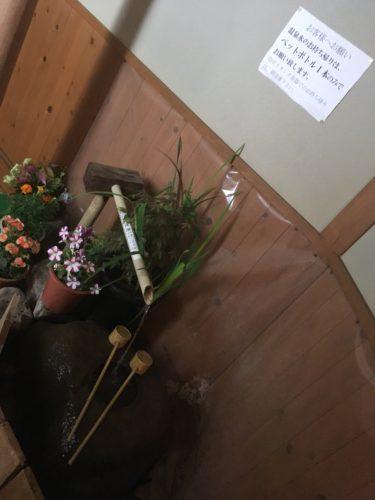 初花の飲泉