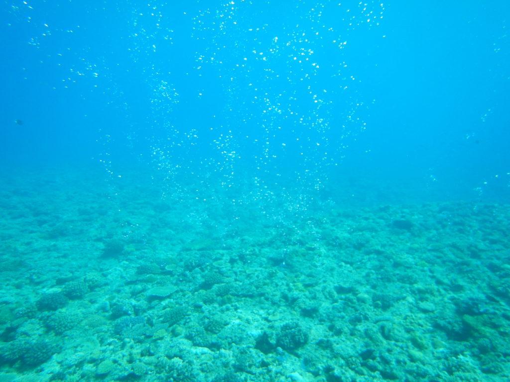 海の中の気泡