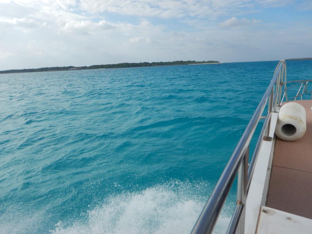 石垣の碧い海