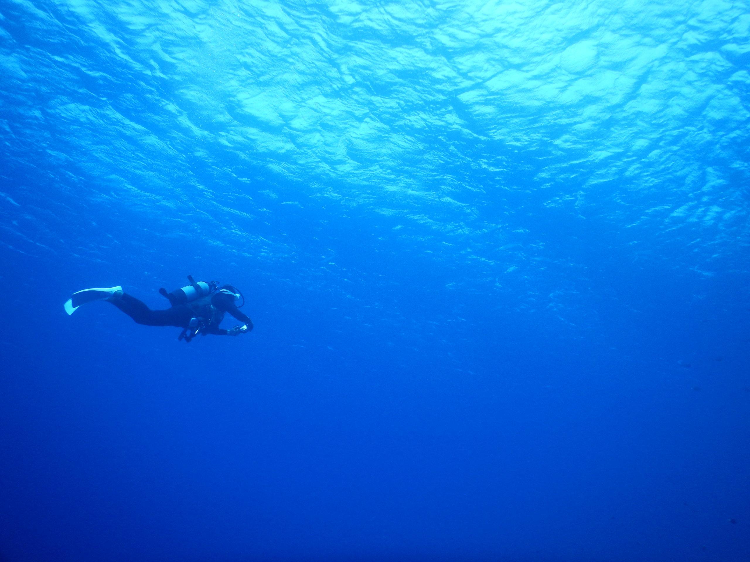 石垣の蒼い海